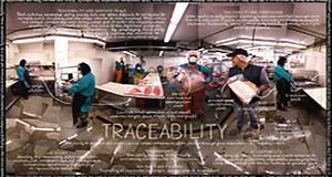 Lexicon-of-Sustainability-Art-Traceability