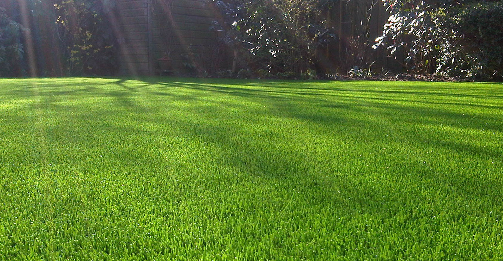 Moving Grass Can Save Money And Create Jobs – Westside